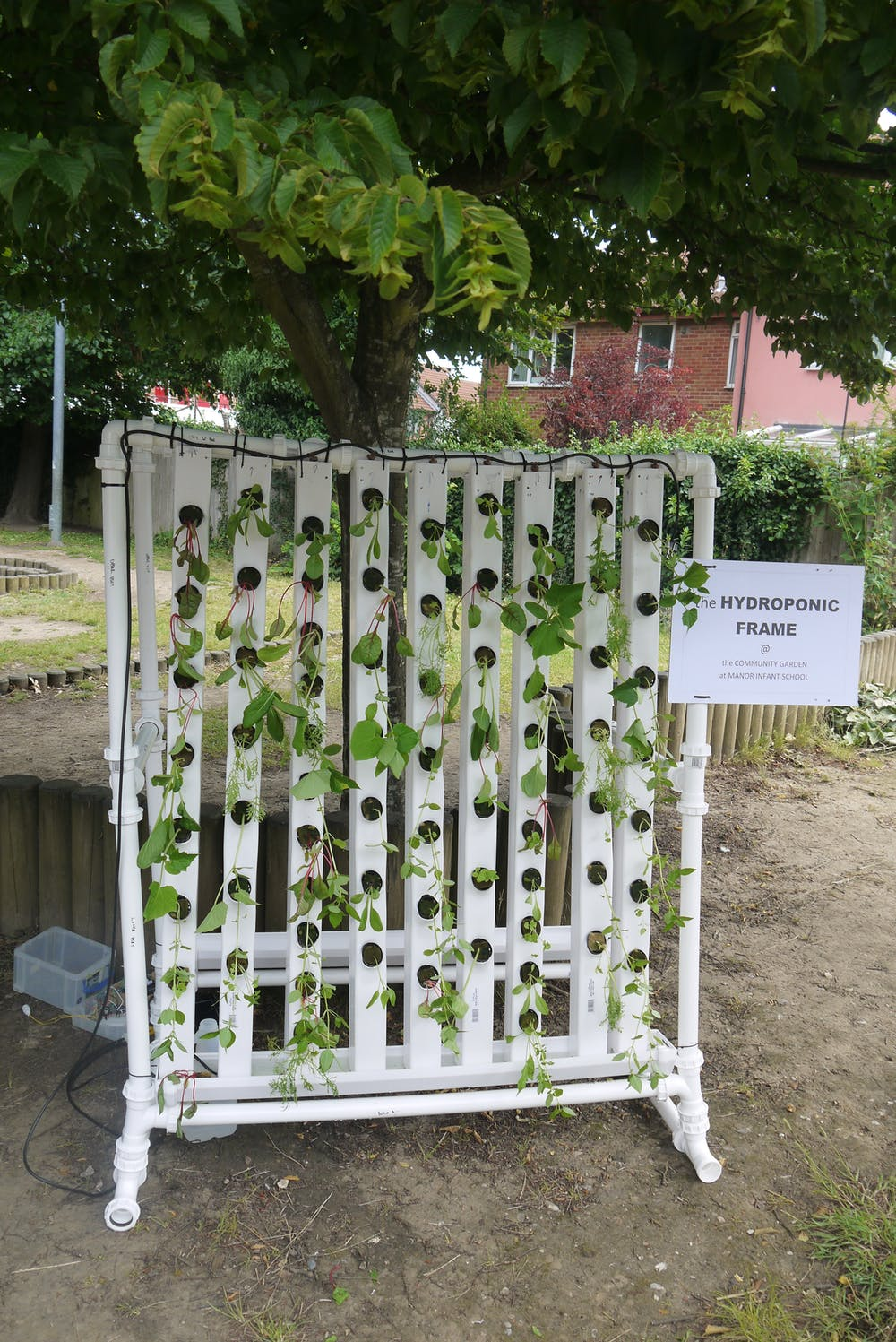 A simplified hydroponic frame in Portsmouth. Photo credit: Silvio Caputo/University of Portsmouth, Author provided