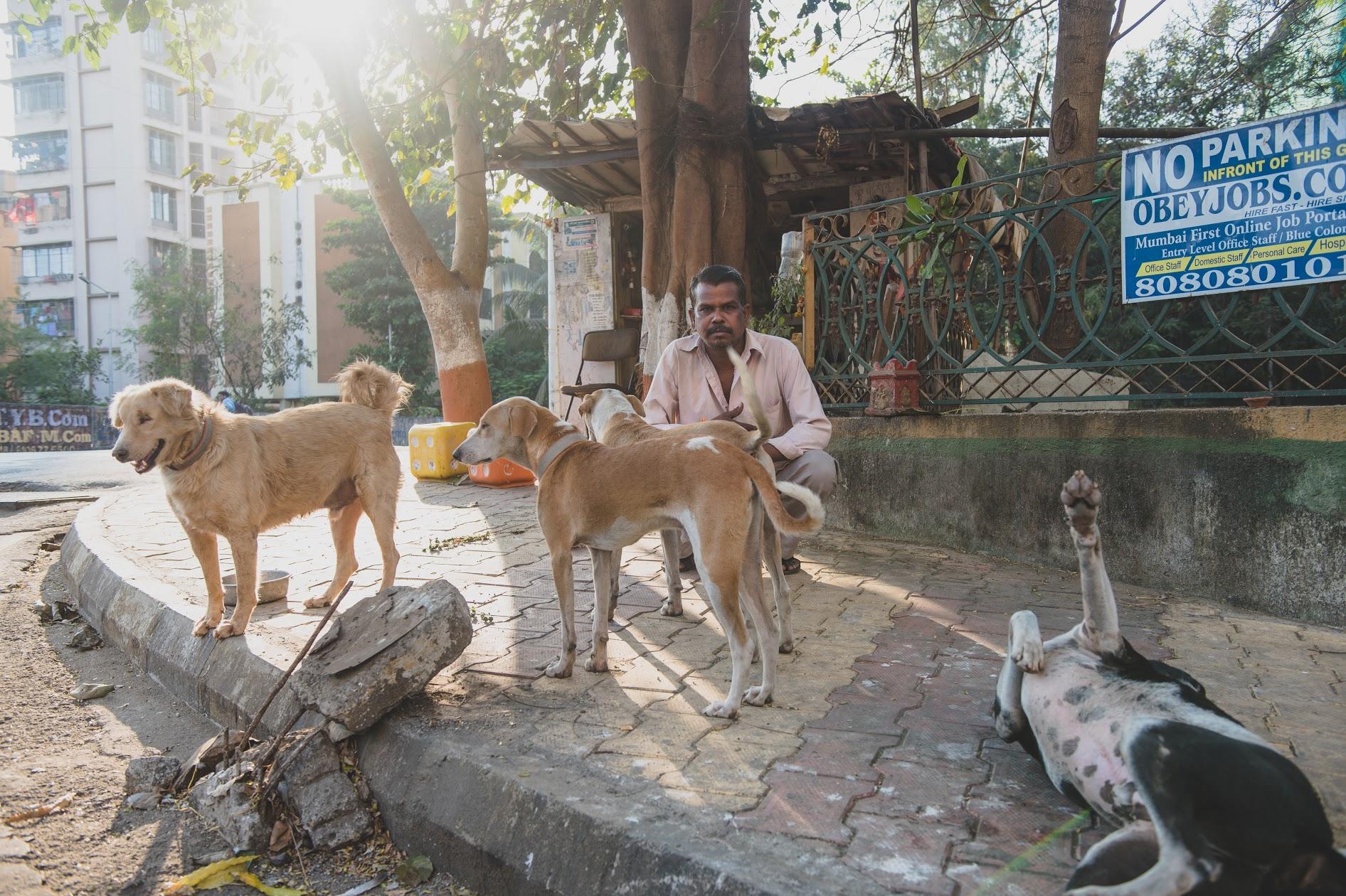 Purbhe with Kaalu, Julie Jr, Dhaamu, Panda, Raja and Raani