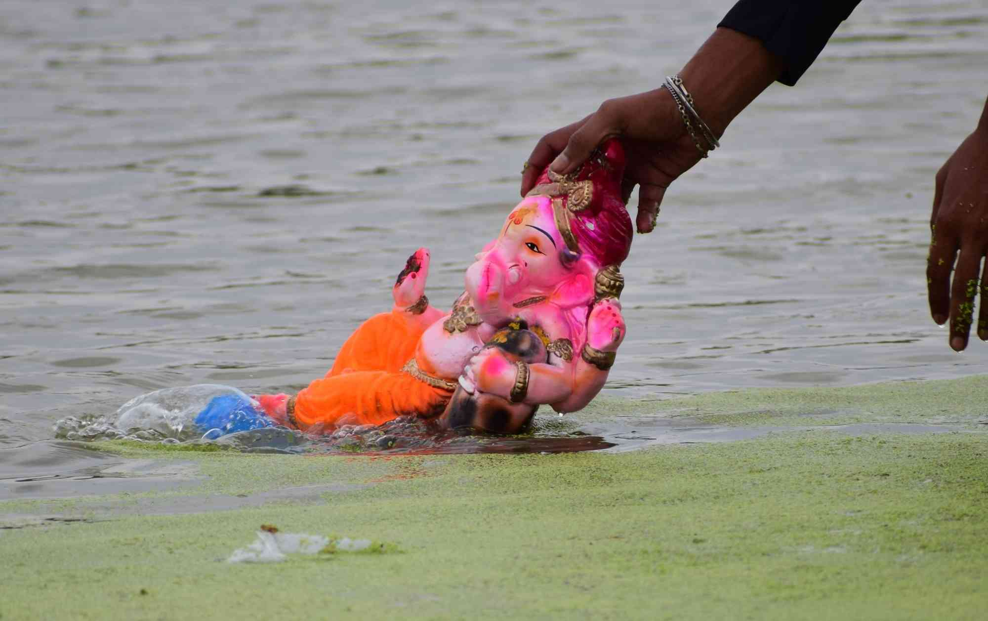 A devotee immerses a statue of the deity in Mathura on Sunday. (Credit: IANS)
