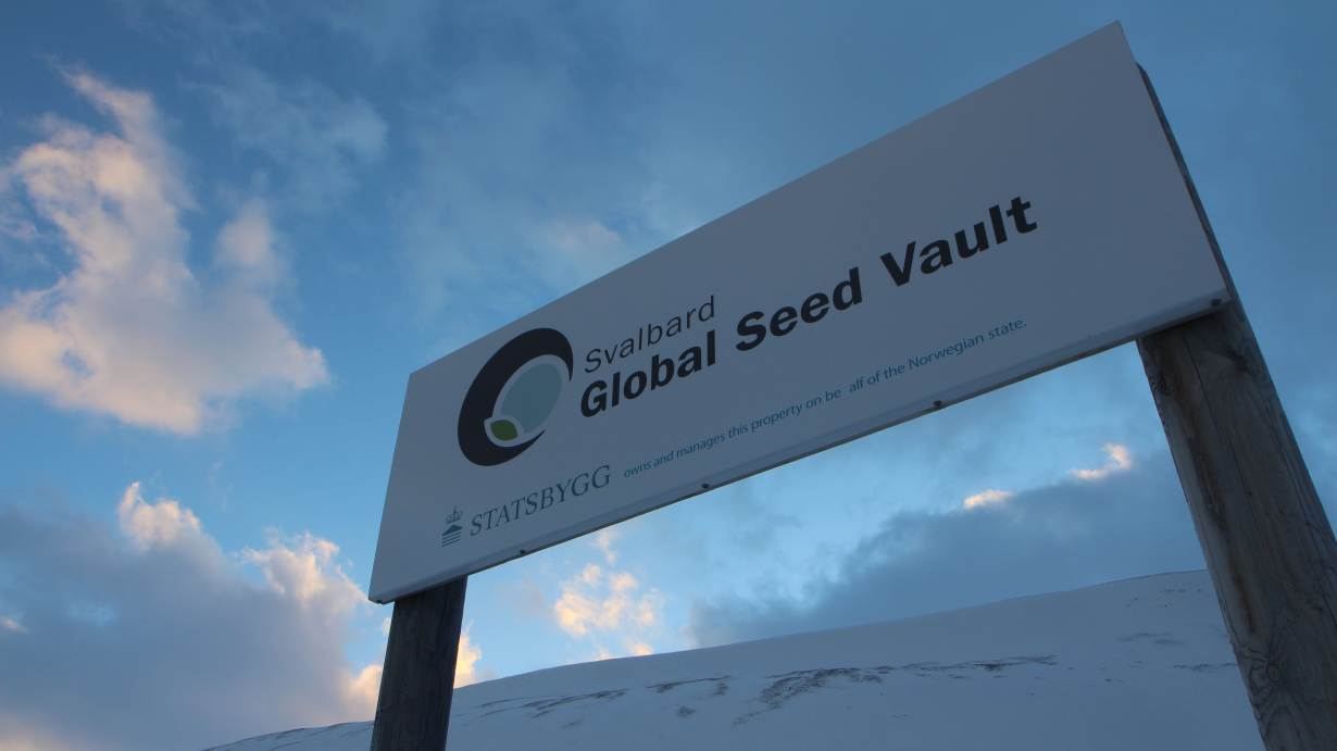 The sign of the Svalbard Global Seed Vault is pictured outside Longyearbyen on the Svalbard archipelago, Norway, February 25, 2018. Photo credit: Thin Lei Win/Thomson Reuters Foundation