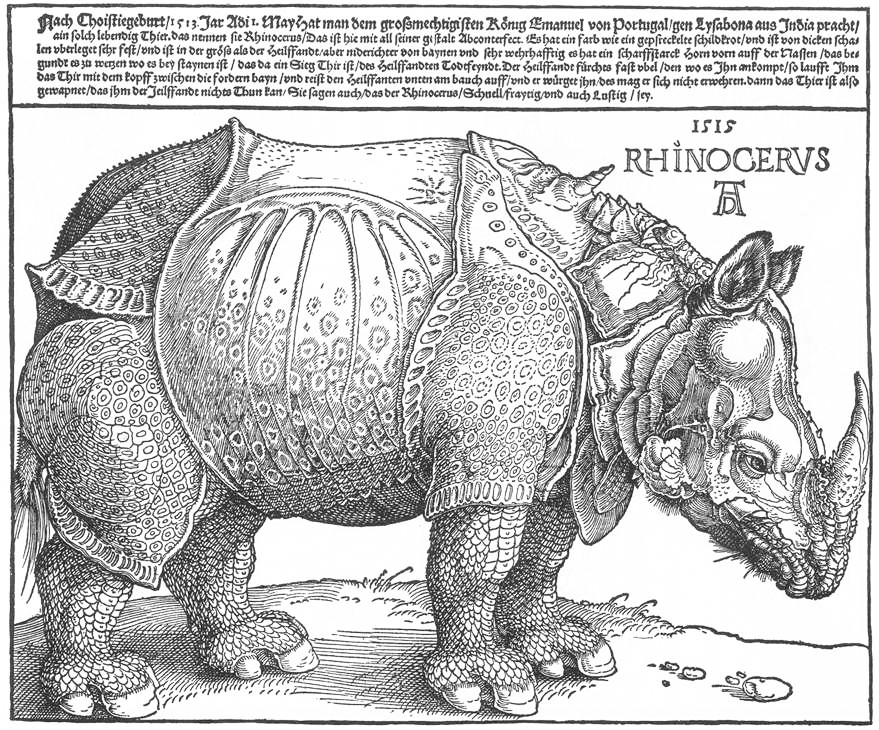 Albrecht Durer's rhinoceros, 1515. Image credit: Albrecht Dürer/Wikimedia Commons [Licensed under CC BY Public Domain Mark 1.0]