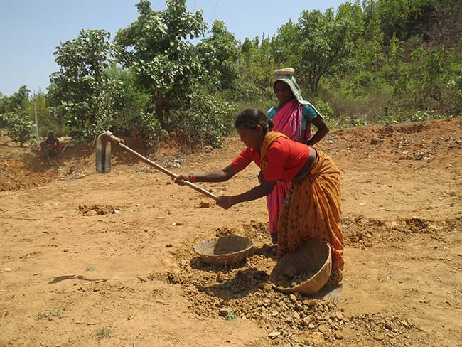 The rural sector provides livelihood to the majority of India's population at present. [Credit: Anumeha Yadav]