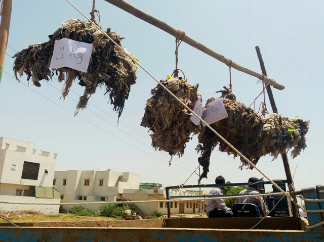 During Natubhai Parmar's rally in Surendranagar town on May 10, a truck displays bunches of plastic removed from dead cows, with signs depicting the weight of plastic removed from each animal.