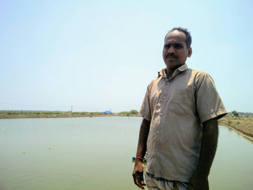 Prawn farmer Sivasamy says villagers exaggerate the extent of groundwater contamination from aquaculture.