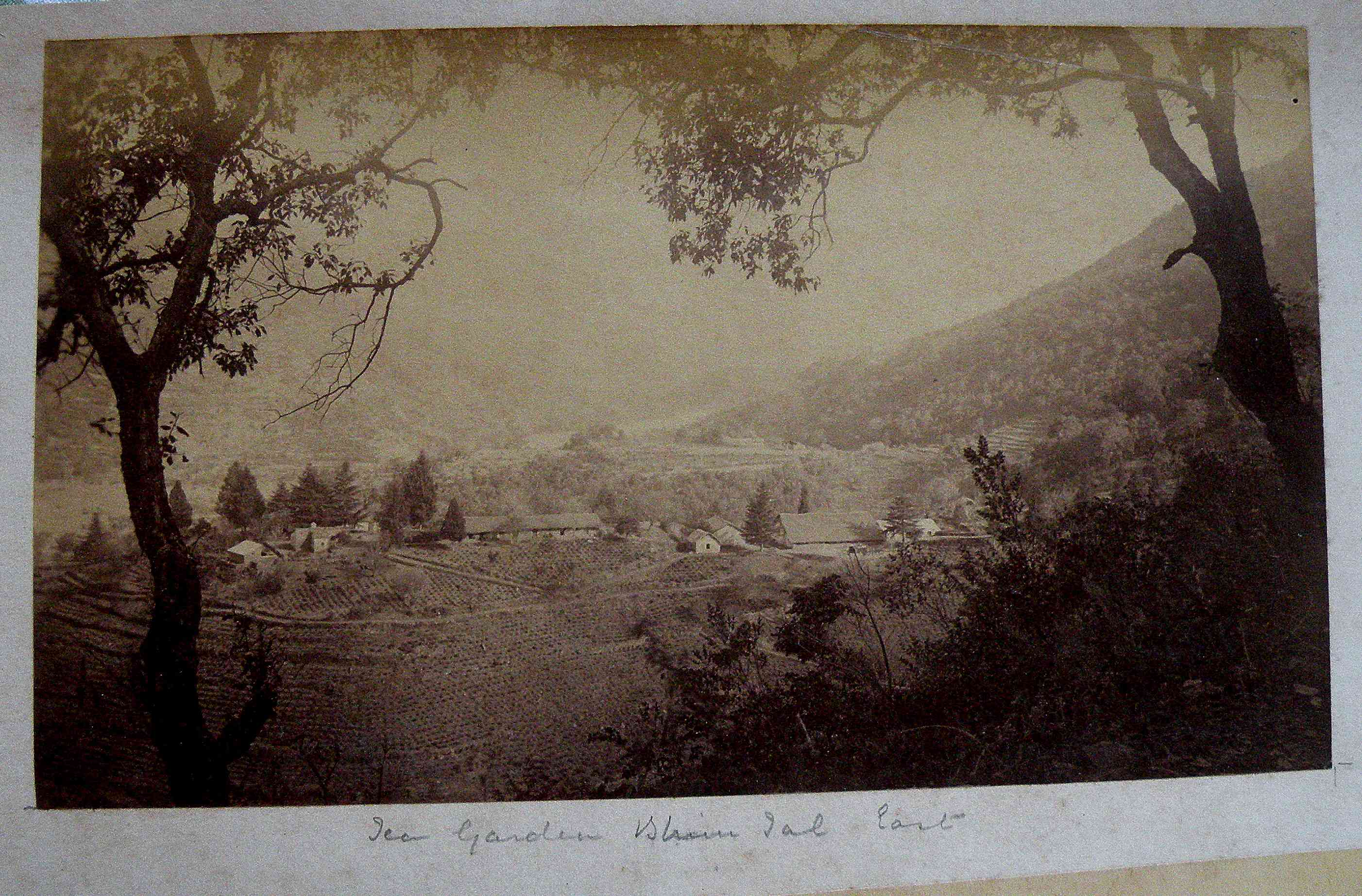The Bhimtal forest estate around 1890. Photo courtesy Peter Smetacek